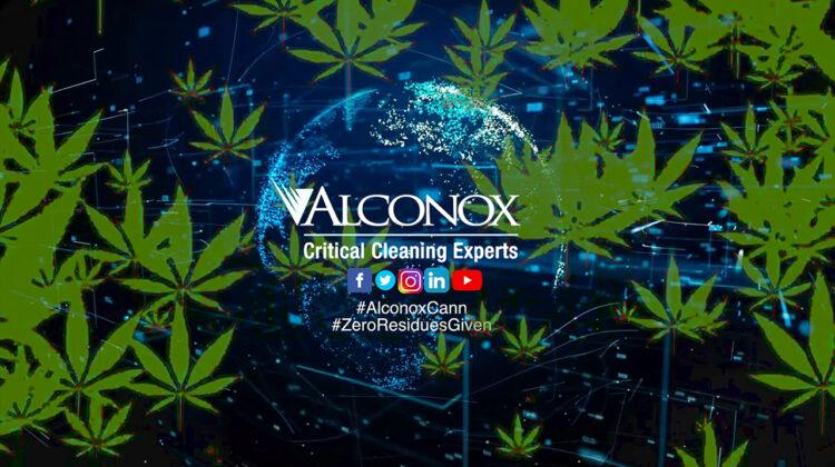 Alconox Cannabis